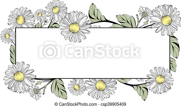 Daisy Flower Frame With Copyspace - csp39905409