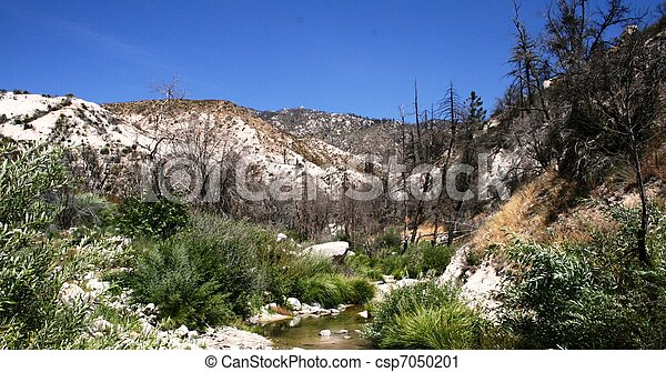 Devil's Canyon Stream 2 - csp7050201