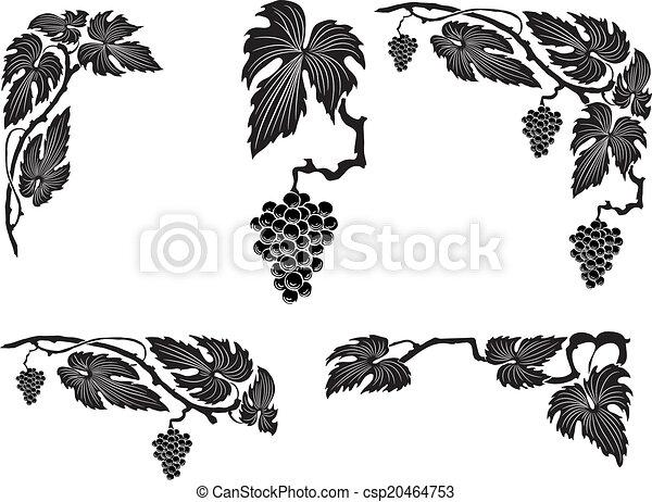 Grape vine - csp20464753
