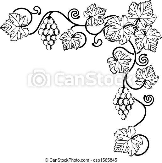 Grape vine design element - csp1565845