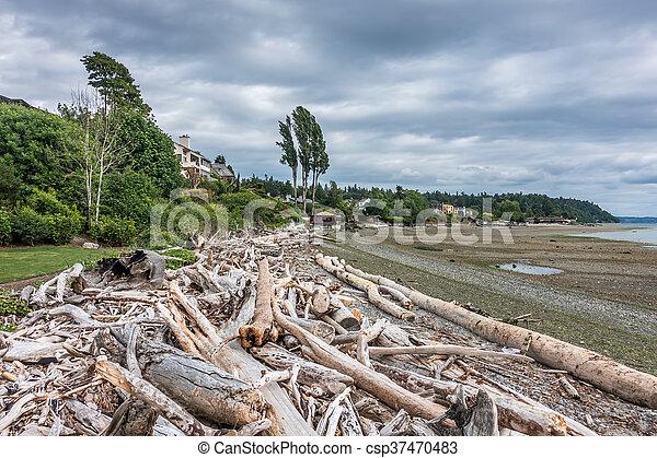Low Tide At Normandy Park 2 - csp37470483