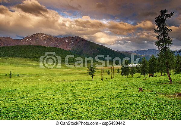 Mountain landscape - csp5430442