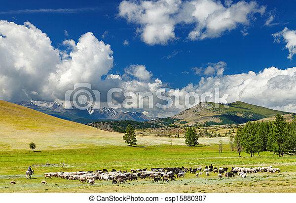 Mountain landscape - csp15880307