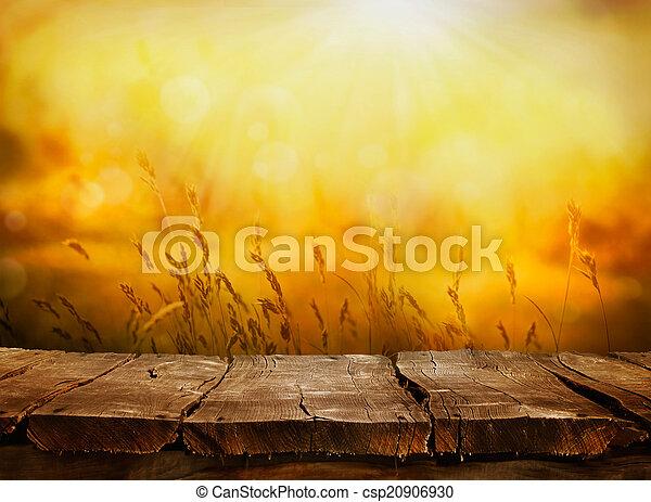 Nature background - csp20906930