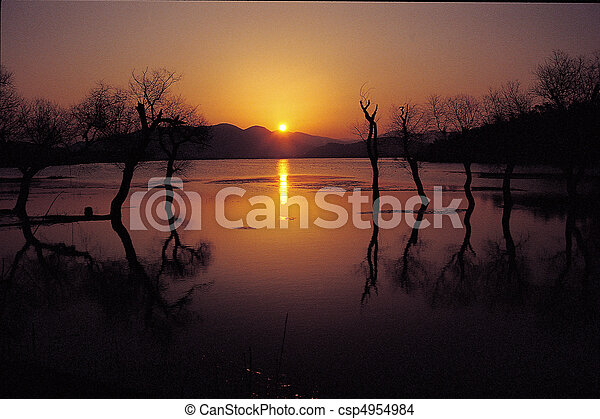 Nature View - csp4954984
