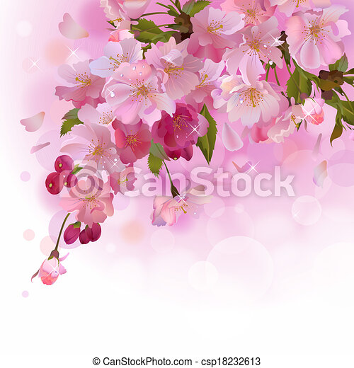 Pink card with cherry branch of flowers - csp18232613