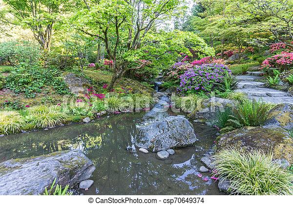 Rocky Garden Stream 2 - csp70649374