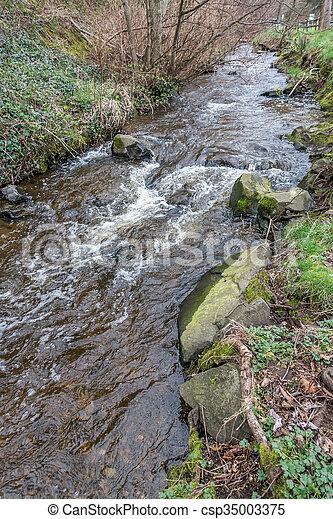 Saltwater Park Stream 2 - csp35003375