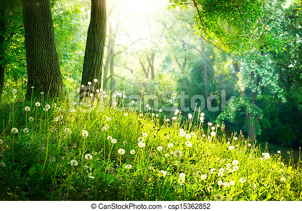 Spring Nature. Beautiful Landscape. Green Grass and Trees - csp15362852