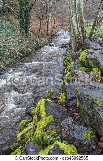 Stream At Saltwater 2 - csp45992565
