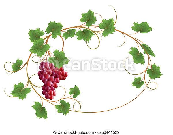 Vine - csp8441529