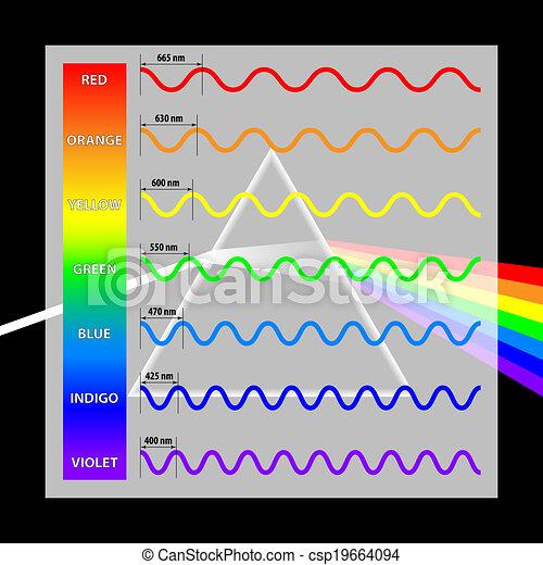 Wavelength colors in the spectrum - csp19664094